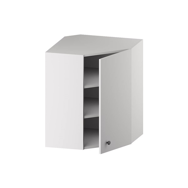 Wall Diagonal Corner Cabinet (1 Door & 2 Shelves) for kitchen